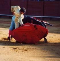 Torrero2 sportspicturestory cv