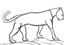 Panther study cv