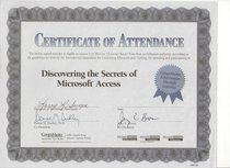 Training microsoft access cv