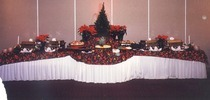 Catering.neutral..christmas cv