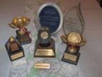 Aka awards cv