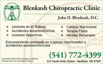 Blenkush chiropractic half h work cv