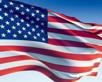 Dennis flag cv