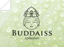 Banner buddaiss cv