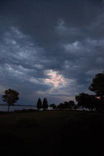 Tonkels sunset3 cv