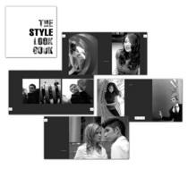 Style lookbk cv