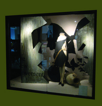 Windowdisplay2 large cv