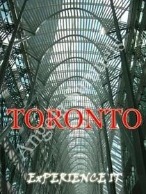 Toronto red cv