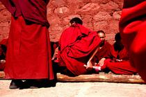 Tibet3 cv