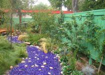 Garden shotpict0012 cv