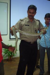 Ravi Kiran Nissankararao