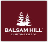 Balsam Hill Christmas Trees