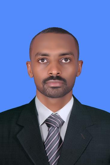 Thamir Elamin Abdalla Ali
