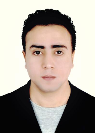 Ali Adel Abdelbaki Elmanfy