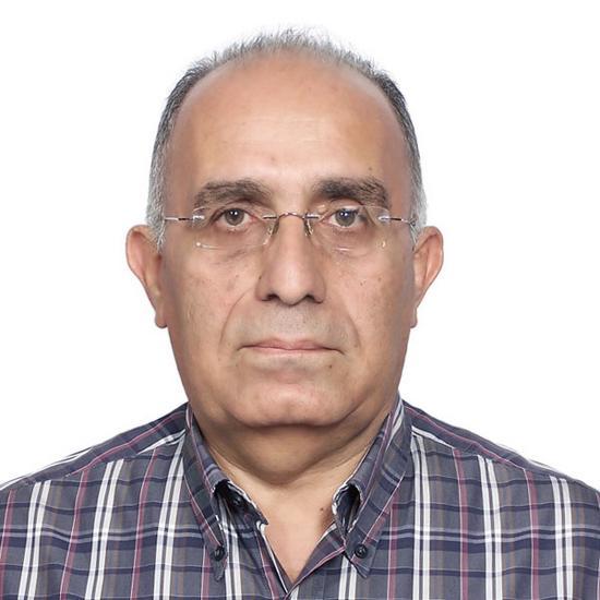 Emile Shenouda