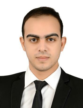 Mohamed Hosny Mohamed