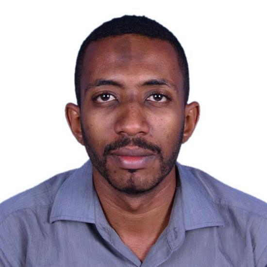 Mohamed Safieldeen Mohamed Dafaalaha