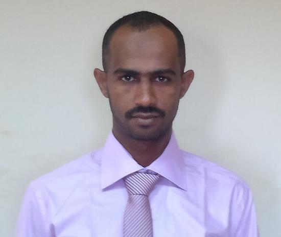 Ala Eldin M. A. Hamoda