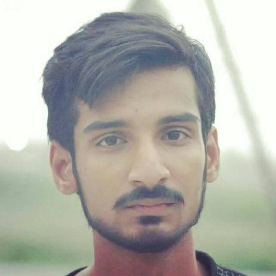 Syed Ameer Hamza