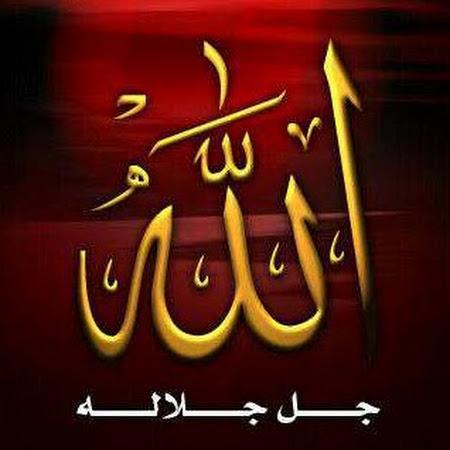 Muhammad Waqar  Hameed