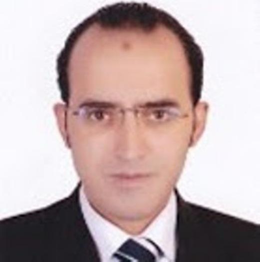 Tarek Abd.Elhakim Abd.Elrazek Amer