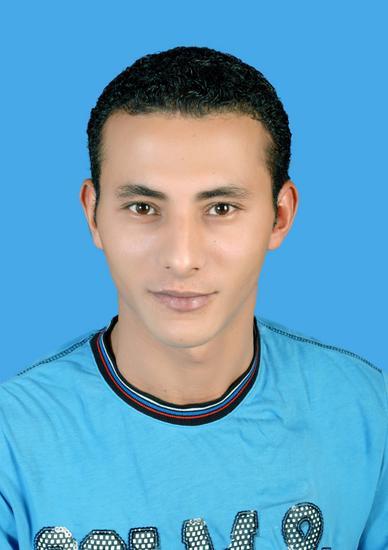 Kamal  Rashwan Tawfik
