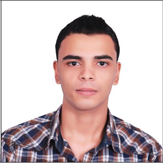 Moustafa  Abdelnabi Arafa
