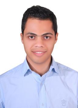 Mohamed  Salah Al-Din Mohamed Hassan