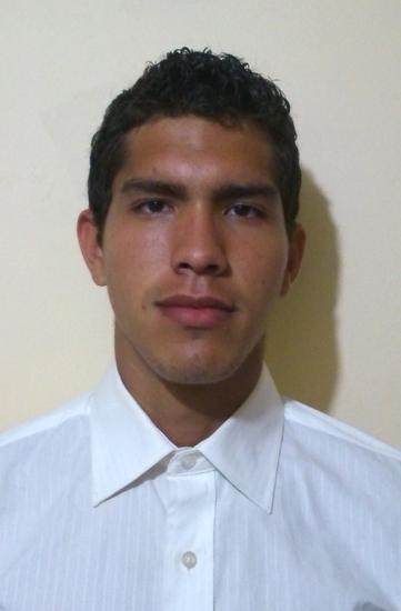 Luis Axel  Palomino Castañeda