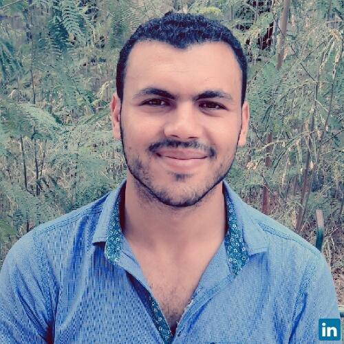 Amr Al Sayed Ali